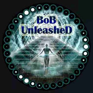 Bob Unleashed Kodi Addons