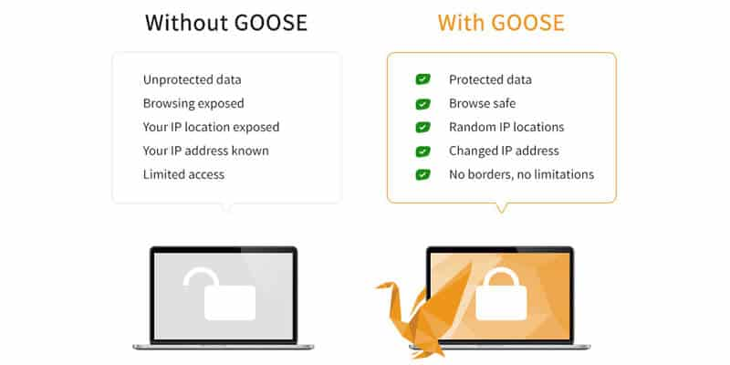 GooseVPN advanced features